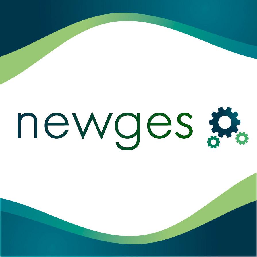 New ges programa de gestión empresarial